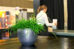 Stock Photo of still life in a modern office