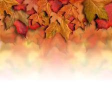 Red orange fall leaves background border Stock Photos