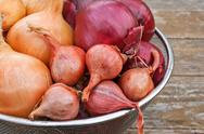 Stock Photo of onions