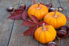 pumpkins&chestnuts - stock photo
