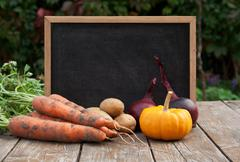 harvest - stock photo