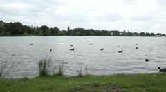 Edgbaston Reservoir Stock Footage