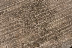 grunge textured concrete sidewalk background - stock photo
