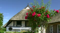 Old Thatched-Roof House with Red Roses - Baltic Sea, Northern Germany Stock Footage