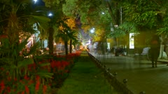 Time Lapse People Stroll Along the Boulevard at Night - stock footage