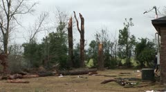 Tornado snapped trees Stock Footage