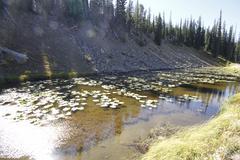 yellowstone grand tetons - stock photo