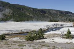 Yellowstone grand tetons geyser Stock Photos