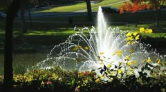 Park with fountain Stock Footage
