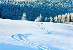 Ski trace on snow surface  and fir forest behind. Stock Photos