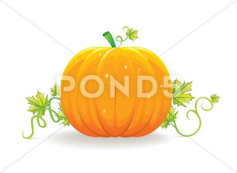 Stock Illustration of halloween pumpkin