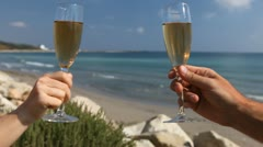 Two Lovers Toasting, Family Celebration on the beach, a glass of sparkling wine Stock Footage