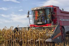 Combined harvester - stock photo
