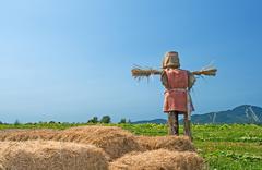 Stock Photo of Scarecrow on the farmland