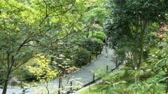 Turistit kävelee kaunis japanilainen puutarha Kiotossa Arkistovideo
