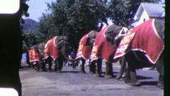CIRCUS ELEPHANTS Comes to Town Parade 1950s Vintage 8mm Film Home Movie 6081 - stock footage