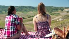 Stock Video Footage of Girlfriends relaxing and drinking wine on picnic, crane shot HD