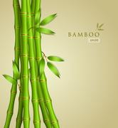 background with green bamboo - stock illustration
