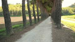 Crane shot of beautiful rural road among trees in Tuscany HD Stock Footage