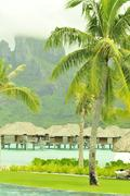 Palms and village in Tahiti - stock photo