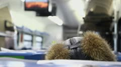 Fur cap of passenger shakes then he sits in train, closeup view Stock Footage