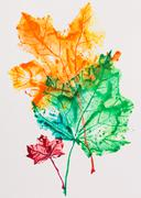maple leaves imprint, watercolor painting - stock photo