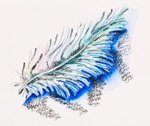 single fluffy feather, watercolor with slate-pencil painting - stock photo