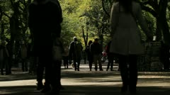 Crowd Walking In Central Park in Autumn Stock Footage