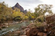 Stock Photo of zion park - watchman