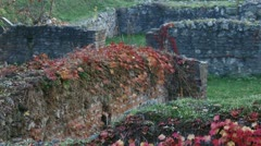 Sirmium, Roman, Imperial house walls Stock Footage
