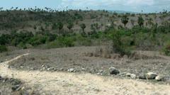 Komodo island Rinca landscape Stock Footage