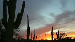 Arizona Red Sky Saguaro Sunset Time Lapse Stock Footage
