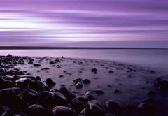 purple pebble bay - stock photo
