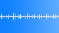 Xmas Sleigh Bells Jingling SFX Äänitehoste