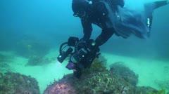 Solo Scuba Diver Filming Stock Footage