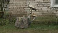 Stock Video Footage of Monument-mushroom