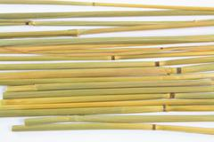 Group of stalks. Stock Photos