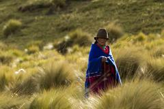 Alausi, Ecuador - 19 December 2011: Andean Peasant Dressed In Traditional - stock photo