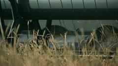 Combines harvest wheat 3 - stock footage