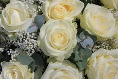 White rose flower arrangement Stock Photos