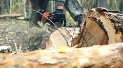 Man sawing wood chainsaw 3 Stock Footage