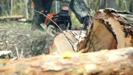 Stock Video Footage of Man sawing wood chainsaw 3