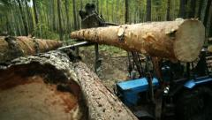 Tractor adds up felled timber into a heap 2 - stock footage