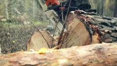 Man sawing wood chainsaw 4 Stock Footage