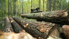 Tractor adds up felled timber into a heap - stock footage