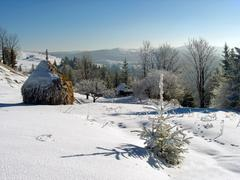 winter mount farmstead - stock photo
