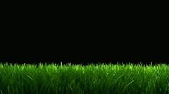 Green grass animation for lower 3rd, matte included. Stock Footage
