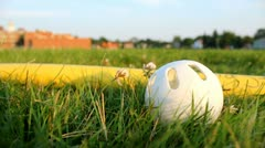 Wiffle Ball and Bat in Grass Stock Footage