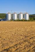 Field in harvest with silo Stock Photos
