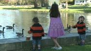 Stock Video Footage of Little girls feeding ducks (4 of 7)